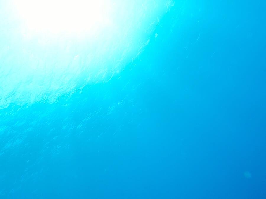 水中から見える光